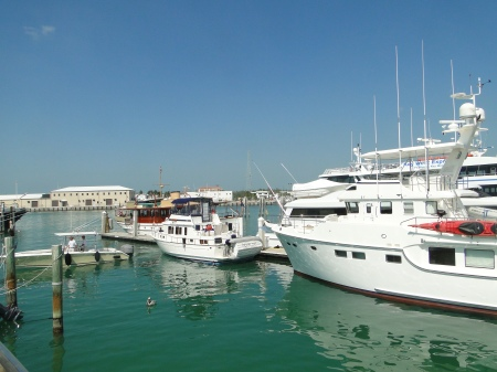 """The """"little white boat"""" on the Yacht Dock"""
